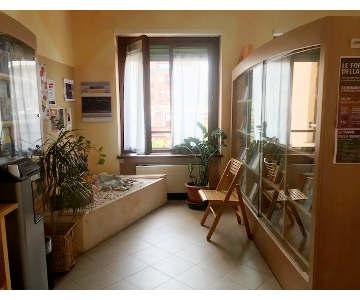 Studio della Dott.ssa Federica Borroni - Milano: Foto 2